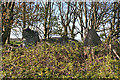 NK0457 : Netherton of Logie Recumbent Stone Circle (6) by Anne Burgess