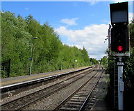 SU3521 : Signal E886 at the SE edge of Romsey railway station by Jaggery