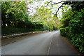 SJ7587 : Leafy lane in Bowdon by Bill Boaden