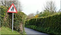 "J4772 : ""Pedestrians in Road"" sign, Scrabo, Newtownards (May 2015) by Albert Bridge"