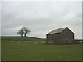 NY6505 : Field barn near Wain Gap by Karl and Ali