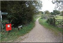 SZ3394 : Pinckney Path, Lymington by Jaggery