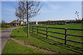 TL6670 : Manor Farm Stud by Bill Boaden