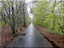 NN9357 : Cycle and footpath near Balmore, Pitlochry by Douglas Nelson