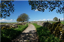 SK2076 : Tideswell Lane by Peter Barr