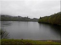 NN9357 : Loch Faskally on a damp early morning by Douglas Nelson