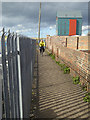 NU2604 : Coast and Castles cycle route, Amble by Oliver Dixon