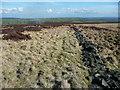 SE0227 : Path along the northern side of Bracken Folly, Midgley by Humphrey Bolton
