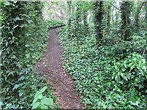 TQ2181 : Path up railway embankment, Old Oak Common by David Hawgood