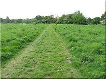 TQ2181 : Wide grass path through scrub, Old Oak Common by David Hawgood