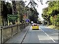 SU9556 : Bagshot Road passing Brookwood Cemetery by David Dixon
