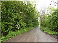 SE9724 : Brickyard Lane by Steve  Fareham