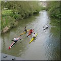SP3165 : Young canoeists, River Leam by the Pump Room Gardens, Royal Leamington Spa by Robin Stott