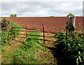 SO5824 : Rusty field gate, Bridstow by Jaggery