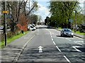 TQ1070 : Staines Road East, Sunbury-on-Thames by David Dixon
