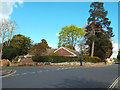 SP2872 : Bungalow and tall trees, corner of High Street and Malthouse Lane, Kenilworth by Robin Stott