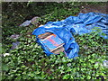 TQ2181 : LP records abandoned in rough sleeper's campsite by David Hawgood