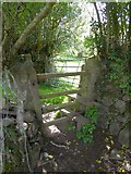 SX6194 : Granite and wood stile on Tor Down by David Smith