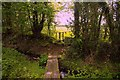 SN1120 : Footbridges near Llandissilio by Alistair Hare