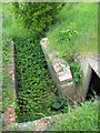 TM1589 : Entrance into an air raid shelter on Site 2 by Evelyn Simak