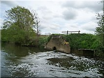 ST6868 : Drain, south bank, River Avon, near Saltford Mead by Christine Johnstone