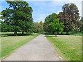 TQ1478 : Path to Jubilee Lodge by Paul Gillett