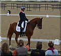 SJ8065 : Somerford Park Premier League Dressage 2015: Carl Hester and Wanadoo by Jonathan Hutchins