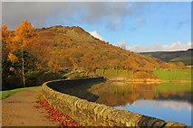 SJ9471 : Bottoms Reservoir by Wayland Smith