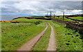 NU0150 : Northumberland Coast Path beside the East Coast Mainline by Chris Heaton