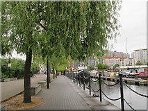 TQ3880 : North end of Poplar Dock by Stephen Craven