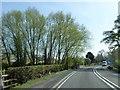 SJ4561 : Hatton Heath Bridge by David Smith
