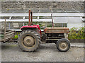 J4779 : Tractor, Clandeboye Estate by Rossographer