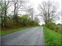 NY2435 : The road from Uldale by Christine Johnstone