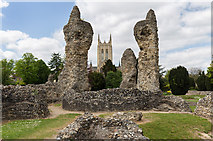 TL8564 : The Abbey ruins, Bury St Edmunds by David P Howard