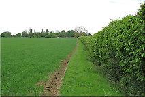 TL9549 : Footpath on field margin, Whelp Street, Preston St Mary by Roger Jones