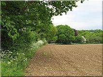 TL9649 : Arable field on parish boundary, Kettlebaston by Roger Jones