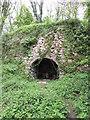 NY0012 : Lime Kiln in Clints Wood by Matthew Hatton