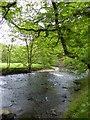 SS9028 : River Barle below Marsh Bridge by David Smith
