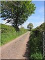 NY4435 : By-way to Unthank over Kirk Moor by Matthew Hatton