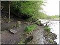 NY7145 : River South Tyne near Bridgend by Andrew Curtis