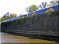 SU6675 : Railway embankment beside the River Thames by Rose and Trev Clough