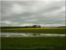 NU2424 : Kelsoe Hill by Carroll Pierce