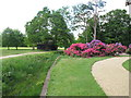 TQ0182 : Ha-ha and rhododendrons, Temple Gardens, Langley Park by David Hawgood