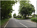 TM0780 : A1066 Low Road, Bressingham by Adrian Cable