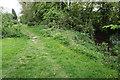 SK3470 : Brookside path by Bill Boaden