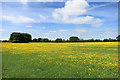SP7807 : Waldridge's Fields by Des Blenkinsopp