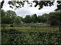 TL2759 : Allotments at Eltisley by Dave Thompson