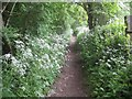 TQ0190 : South Bucks Way: West of the M25 Motorway by Nigel Cox
