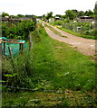 SU3621 : Path south from Knatchbull Close through Romsey Allotments by Jaggery