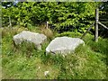 SD6612 : Rest a while by Philip Platt